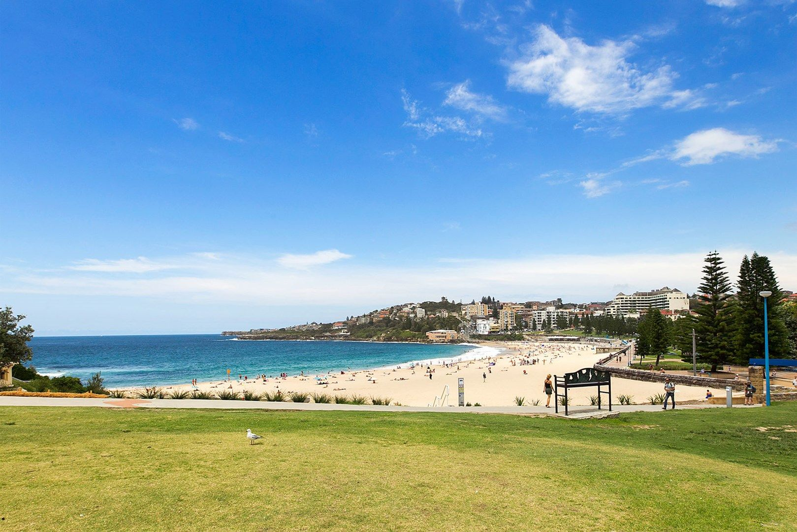 Unit 5/92 Coogee Bay Road, Coogee NSW 2034, Image 0