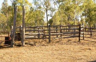 Picture of 95 Colliver Road, Alton Downs QLD 4702