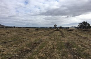 Picture of Lot 1 Hill End Road, Mudgee NSW 2850