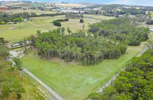 Picture of 89 Thompsons Road, Wesley Vale TAS 7307