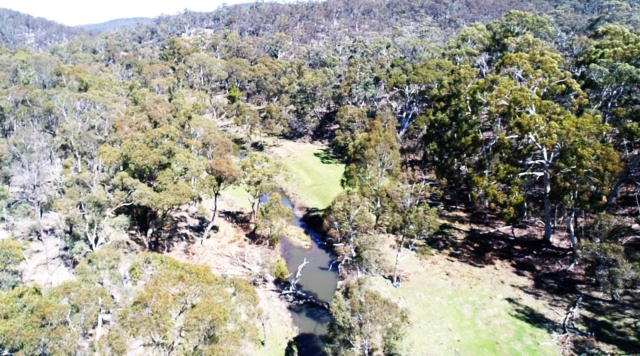 Lot 260 Back Arm Road, Middle Arm NSW 2580, Image 0