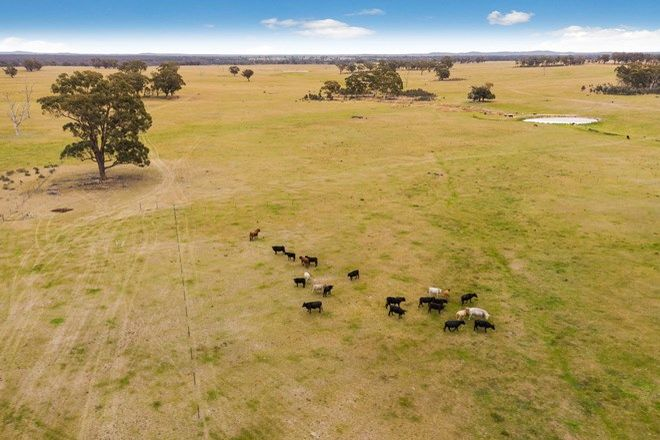 Picture of 621 Murphys Lane, KNOWSLEY VIC 3523