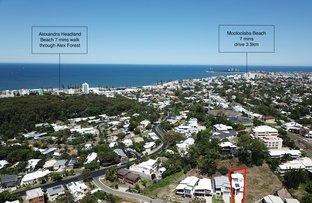 13 The Grove Grove, Alexandra Headland QLD 4572