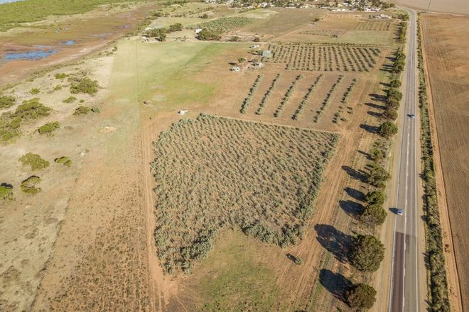 Picture of Lot 16 Yorke Highway, CLINTON SA 5570