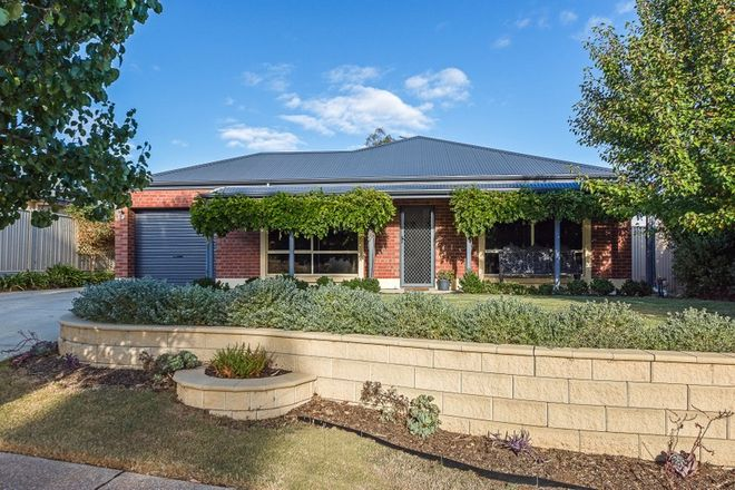 Picture of 25 St Andrews Drive, STRATHALBYN SA 5255