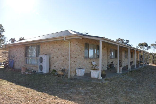 Picture of 103 Mebul Road, GULGONG NSW 2852