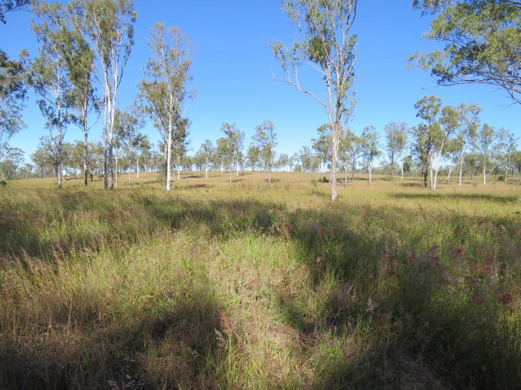 Dallarnil QLD 4621, Image 1
