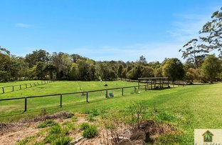 Picture of 8 Platypus Ct, Mooloolah Valley QLD 4553