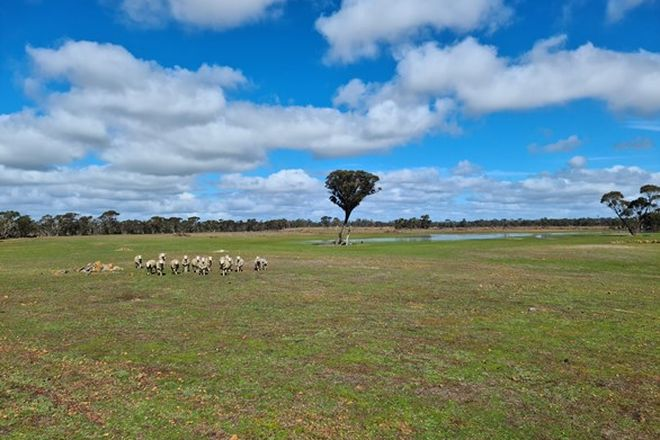Picture of 750 Kybellup Rd, FRANKLAND WA 6395