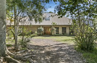 Picture of 119 North Curramore Road, Jamberoo NSW 2533
