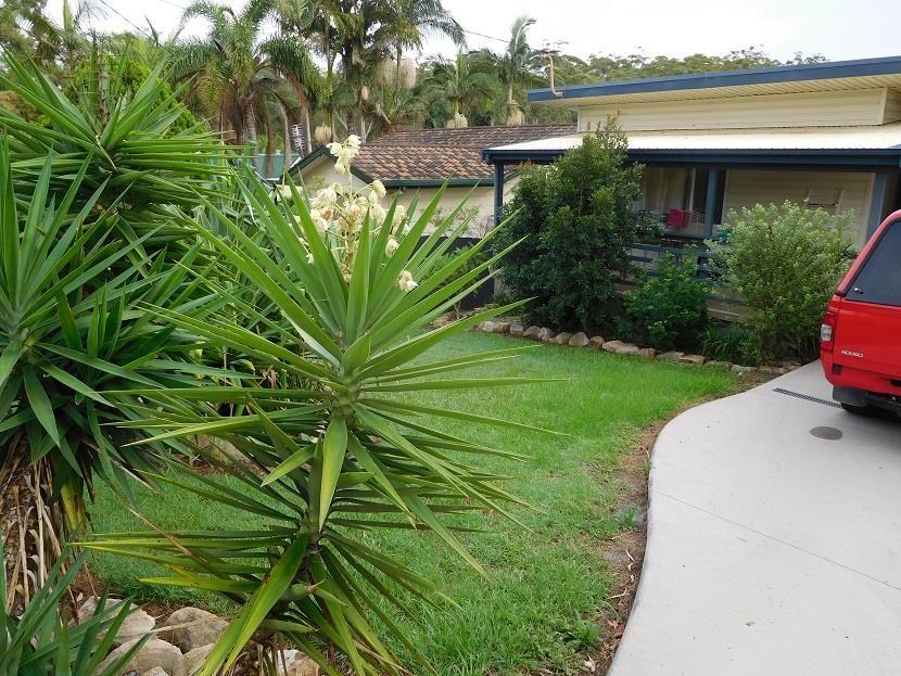 5 Diamond Head Drive, Sandy Beach NSW 2456, Image 1