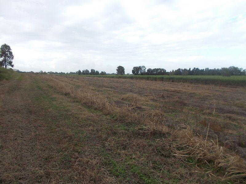 47219 Bruce Highway South, Bambaroo QLD 4850, Image 2