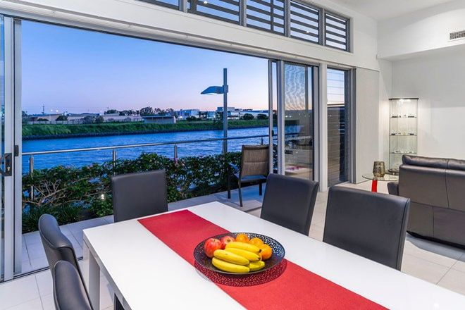 Picture of 79, 11/79, 11 Grant Ave, HOPE ISLAND QLD 4212