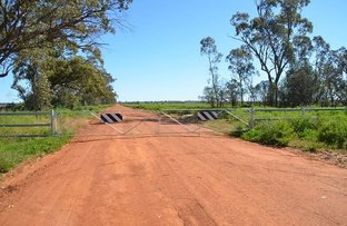 Picture of * Cooper's, Hermidale NSW 2831