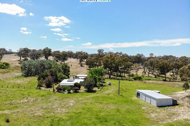Picture of 13497 Guyra Road, TINGHA NSW 2369