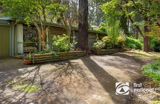 Picture of 477 Belgrave-Gembrook Road, Avonsleigh VIC 3782
