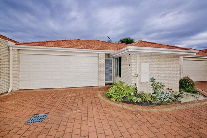 Picture of 33B Thorney Way, BALGA WA 6061