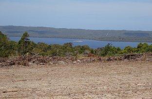Picture of Lot 132 Wisteria Link, Denmark WA 6333