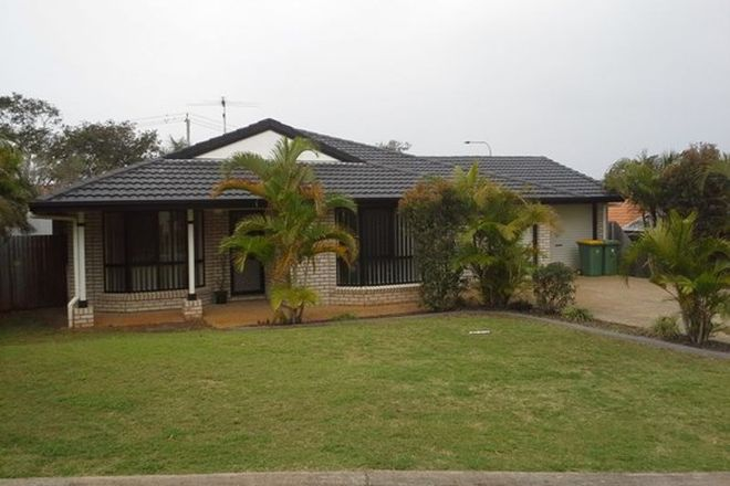 Picture of 11 Lindeman Place, REDLAND BAY QLD 4165