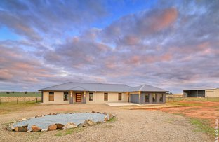 Picture of Lot 1 Coopers Lane, Coolamon NSW 2701