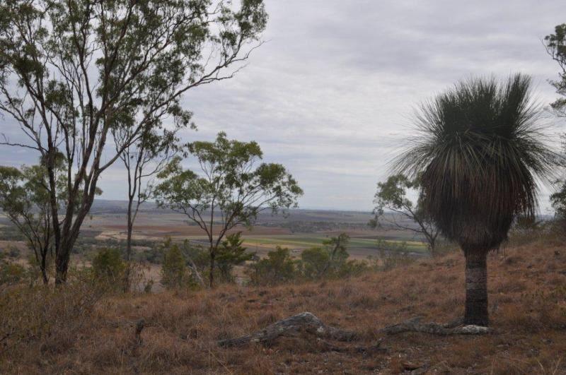 - Cambooya, Greenmount QLD 4359, Image 1
