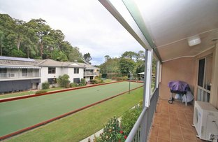 Picture of 52 Lakeside Drive, Murwillumbah NSW 2484