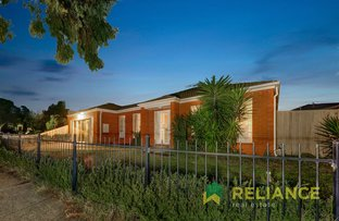 Picture of 14 Thomson Way, Taylors Hill VIC 3037