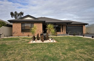 Picture of 56 Verri Street, Griffith NSW 2680