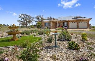 Picture of 183 Henry Parkes Road, Parkesbourne NSW 2580