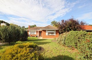 Picture of 3 balmoral  avenue, North Brighton SA 5048