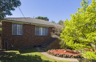 Picture of 24 Stephens Road, Healesville VIC 3777