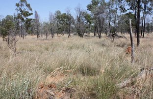 Picture of 'SPECULATION'  Jericho Dunrobin Road, Jericho QLD 4728