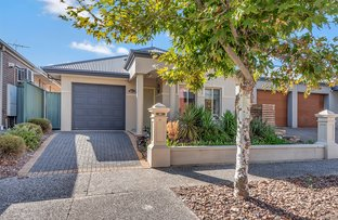Picture of 37 Grasswren Way, Mawson Lakes SA 5095