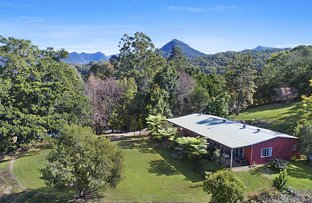 Picture of 20 Astron Road, Zara NSW 2484