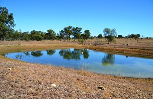 Picture of 829 Lion Mountain Road, Alton Downs QLD 4702