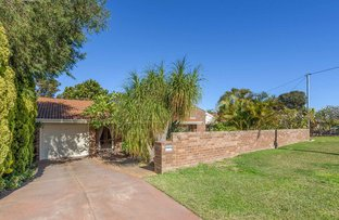 Picture of 51 Wanjina Crescent, Wanneroo WA 6065