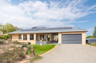 Picture of 28 Jarvis Street, Oura NSW 2650