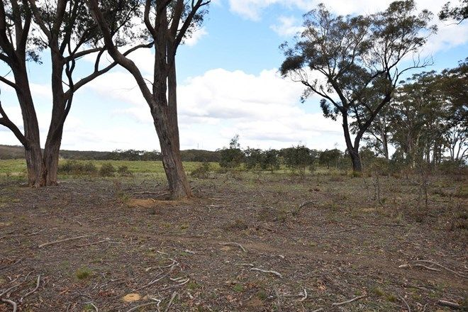 Picture of 633 Hanging Rock  Road, PADDYS RIVER NSW 2577