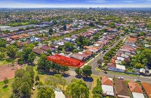 Picture of 2 Allibone Street, Ashbury NSW 2193