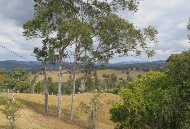 536 Welshs Creek Rd, Yarranbella NSW 2447, Image 1