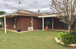 Picture of 11 Goodes Road, Ungarra SA 5607
