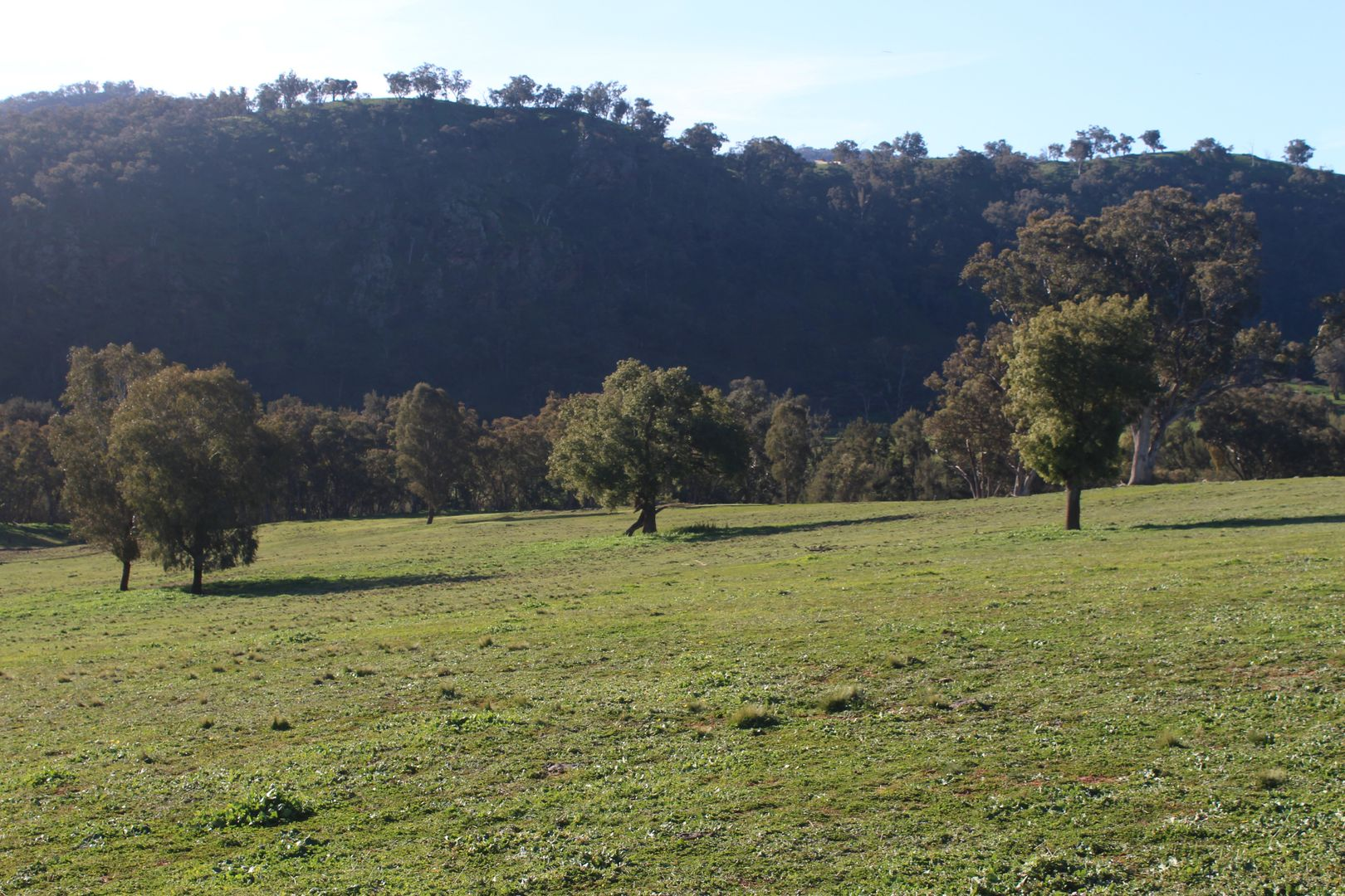 ABERCROMBIE ROAD, Tuena NSW 2583, Image 2