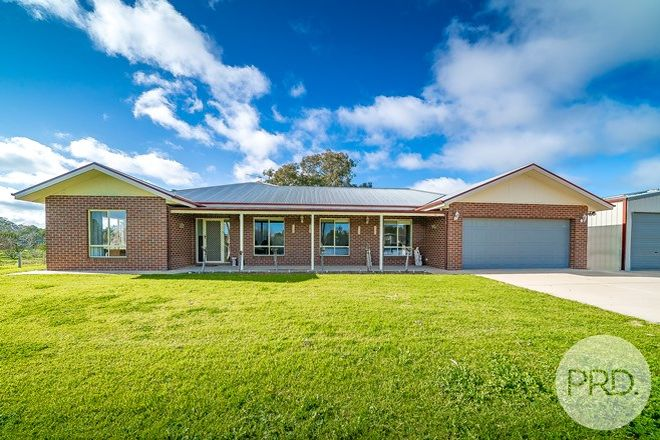 Picture of 6 Bell Gum Place, LAKE ALBERT NSW 2650