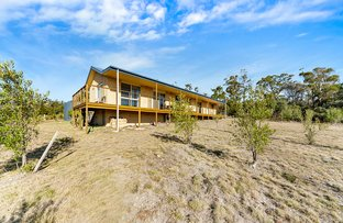Picture of 88 Barton Avenue, Triabunna TAS 7190