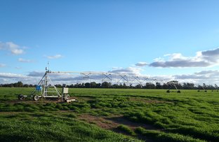 Picture of 989  Euroley Road, Yanco NSW 2703