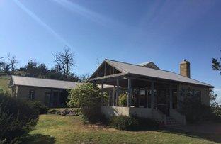 25a O'Brien Avenue, Berridale NSW 2628