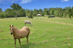 Picture of 32 Croziers Road, Pinbarren QLD 4568