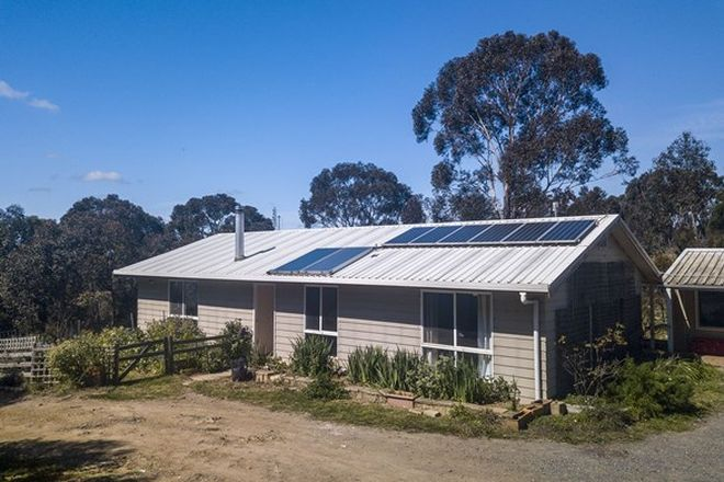 Picture of 2925 Mayfield Road, LOWER BORO NSW 2580