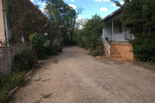 Picture of 1/50 Hill Street, FORBES NSW 2871