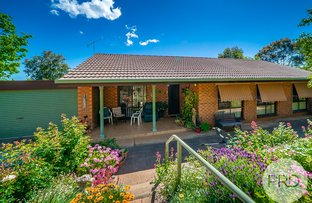 Picture of 16 Lincoln Avenue, Tolland NSW 2650